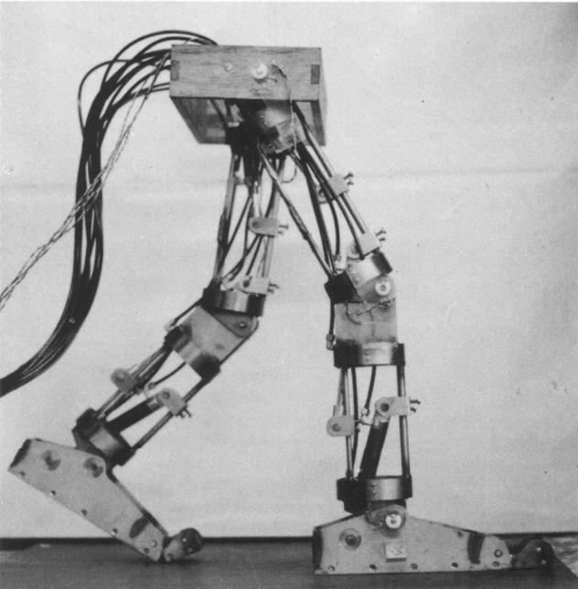 Humanoid History -Biped Walking Robot-